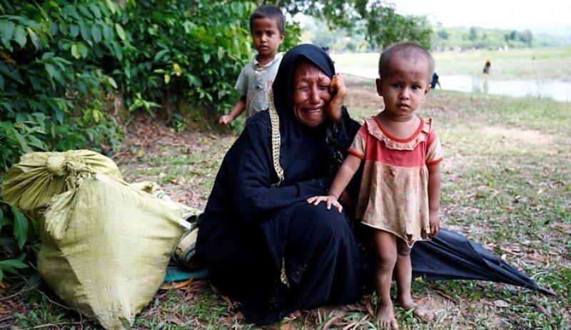 Arakanlı Mülteciler İçin Acil Çadır ve Gıda Yardımı Çağrısı